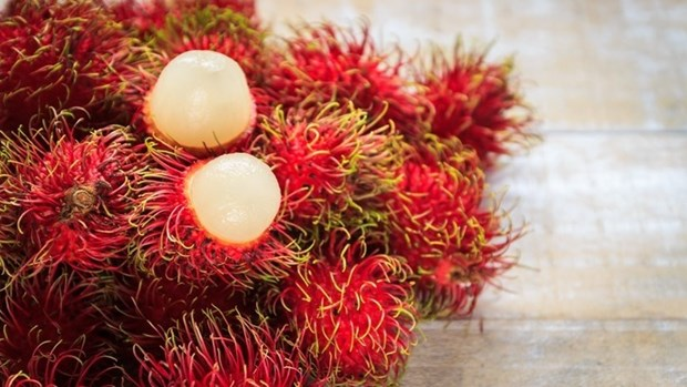German firm develops bioactives for cosmetics from Vietnam's rambutan hinh anh 1