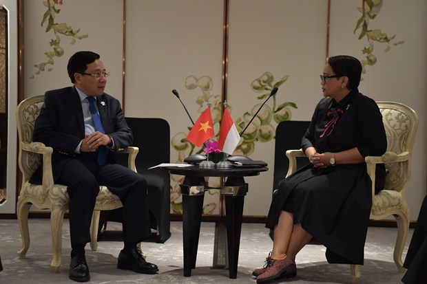 Vietnam resolved to beef up ties with Indonesia: Deputy PM hinh anh 1