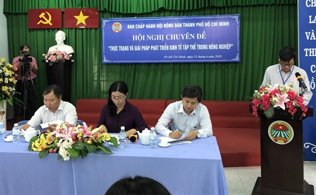 HCM City eyes boost to collective sector hinh anh 1
