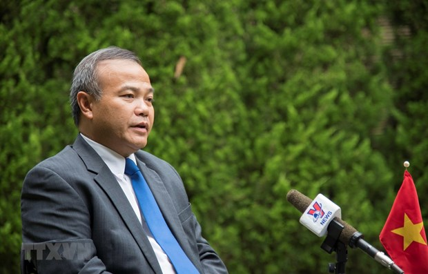 Vietnam to take an active part in G20 Summit: ambassador hinh anh 1