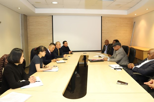 Vietnam, South Africa look to expand trade linkage hinh anh 1