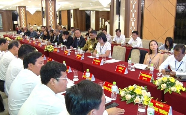 Ha Nam fosters collaboration with foreign diplomatic, trade agencies hinh anh 1