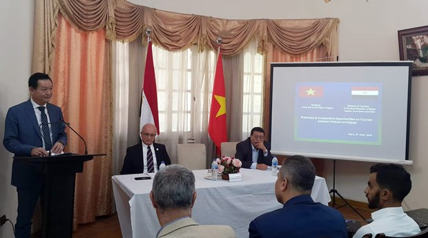 Vietnam, Egypt eye stronger tourism cooperation hinh anh 1