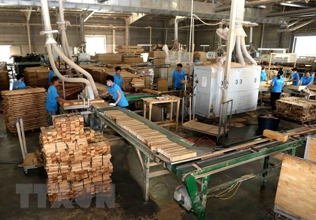 Promoting socially responsible practices in wood, seafood processing hinh anh 1