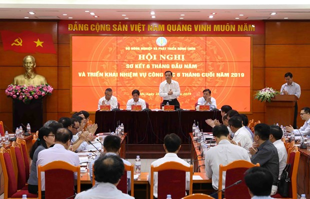 Agriculture sector posts 2.39 percent in first half of 2019 hinh anh 1