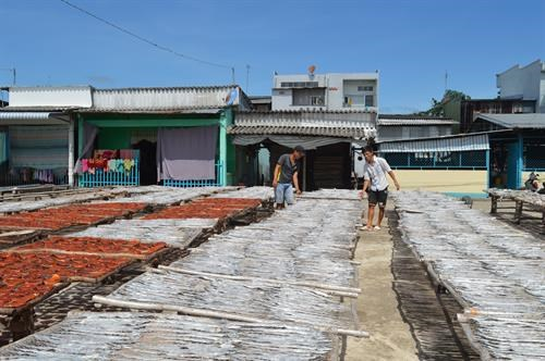Ca Mau province to expand craft villages hinh anh 1
