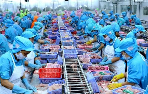 EVFTA offers huge opportunities for seafood sector to reach out hinh anh 1