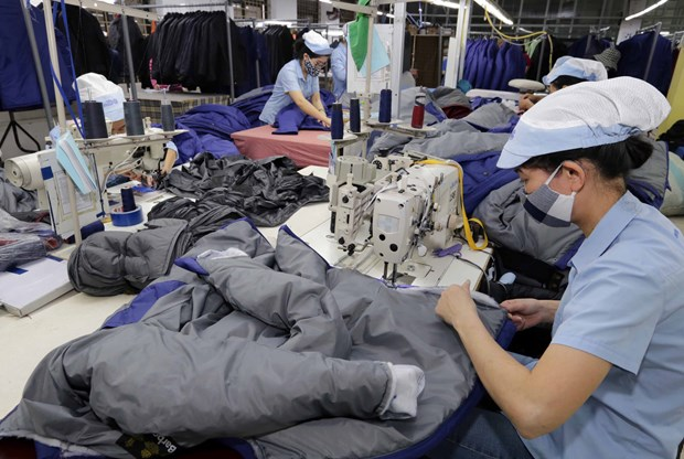 Apparel sector urged to develop supporting industry to optimise EVFTA hinh anh 1