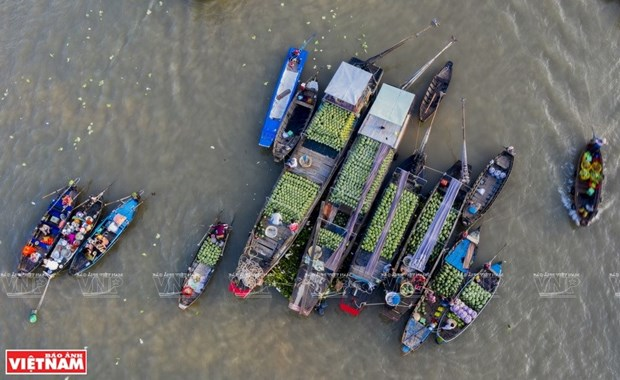 Cai Rang floating market in Mekong Delta hosts cultural festival hinh anh 1