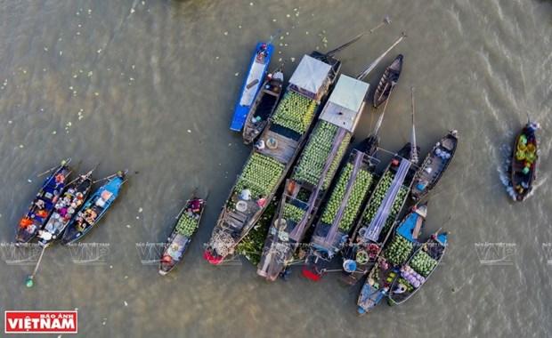 Cai Rang floating market in Mekong Delta hosts cultural festival hinh anh 1