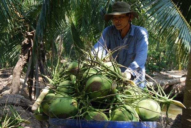E-commerce needs new push to reach rural areas hinh anh 1