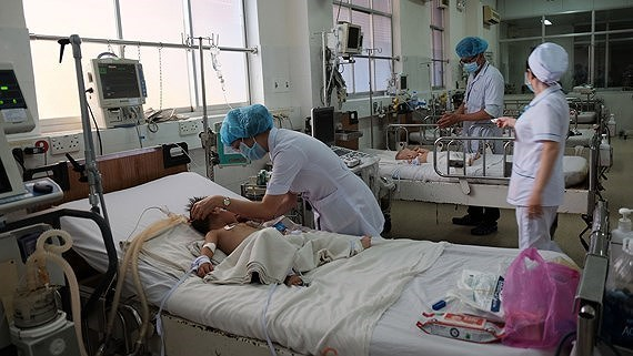 Southern localities see increase in dengue fever patients hinh anh 1