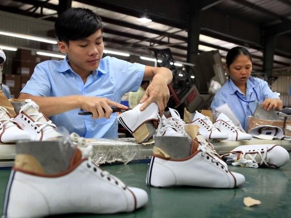 Footwear exports buoyed thanks to FTA hinh anh 1