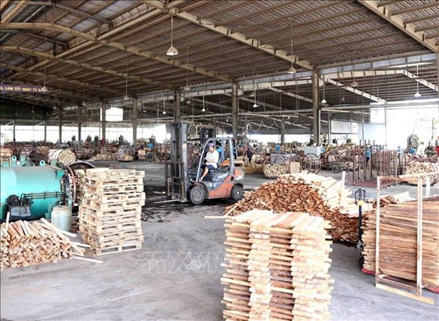 EVFTA to sustainably boost Vietnam's wood exports to EU hinh anh 1
