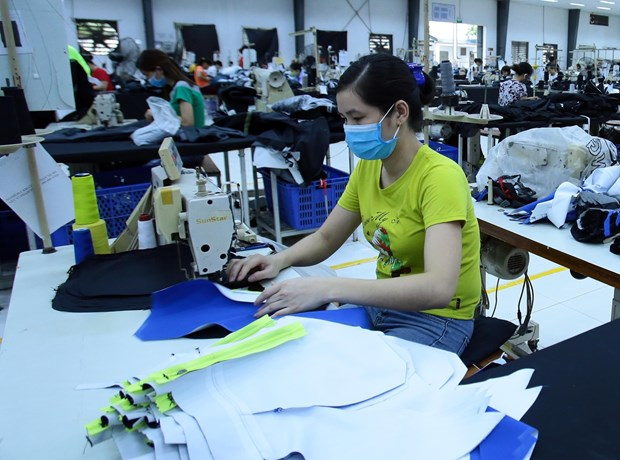 More than 280,000 people receive unemployment allowances hinh anh 1