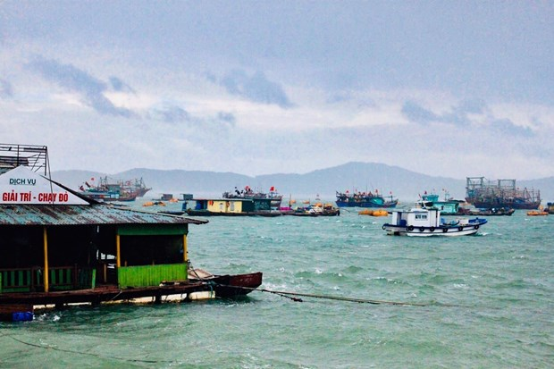 Quang Ninh evacuates tourists from islands ahead of Typhoon Mun's arrival hinh anh 1