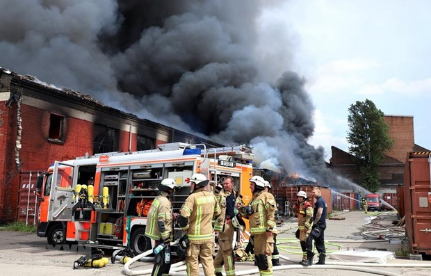 Vietnamese market in Germany on fire hinh anh 1