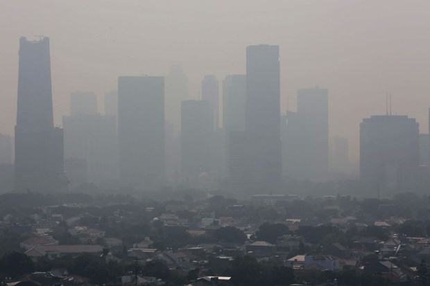 Indonesia's capital city faces severe air pollution hinh anh 1
