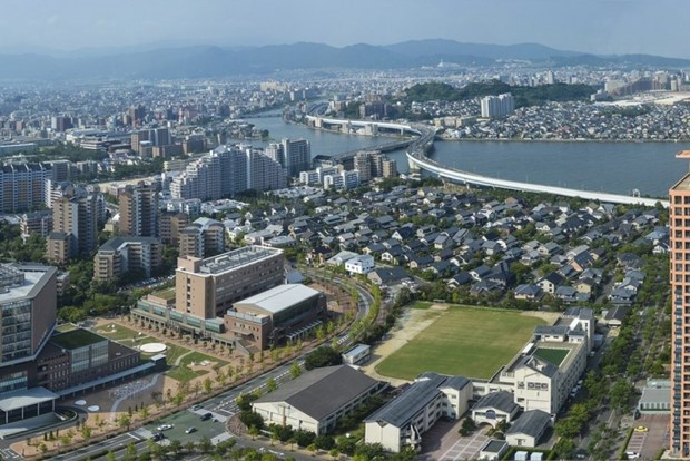 Vietnamese association to be set up in Japan's Fukuoka prefecture hinh anh 1
