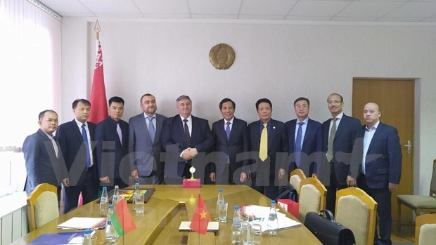 Vietnam seeks external information experience of Belarus, Estonia hinh anh 1