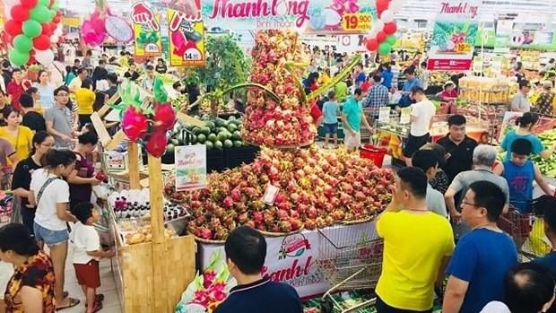 Binh Thuan's dragon fruits promoted in Hanoi hinh anh 1