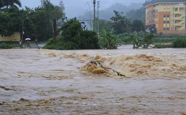 Thanh Hoa strives to be more disaster resilient this rainy season hinh anh 1