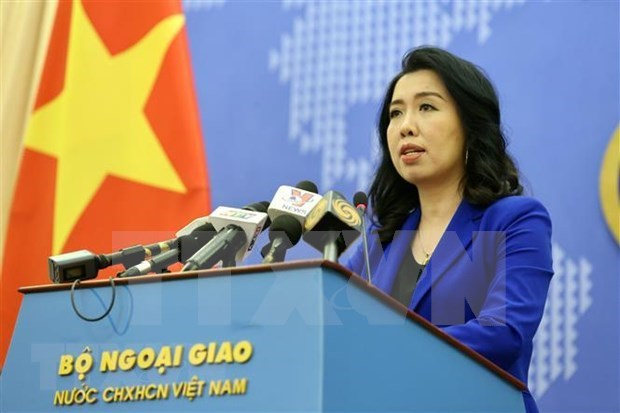Strict handling demanded for violence against Vietnamese woman in RoK hinh anh 1
