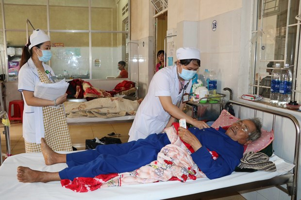 Dengue fever spreads across country hinh anh 1