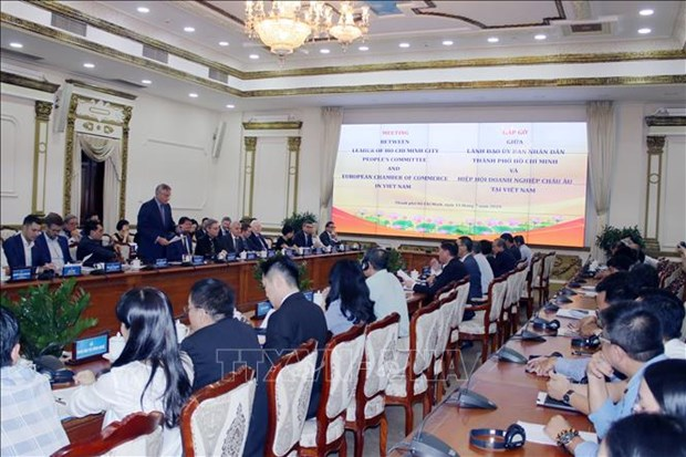 HCM City wants to cooperate with European businesses in smart city hinh anh 1
