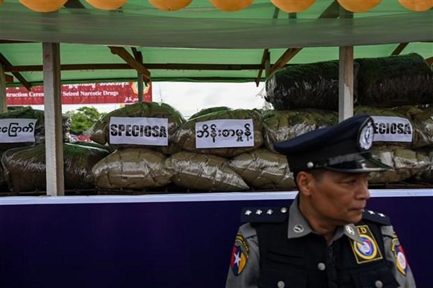 Myanmar seizes large amount of drugs in Shan state hinh anh 1