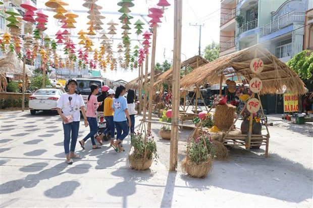 Culture, tourism week in Dong Thap attracts 600,000 visitors hinh anh 1