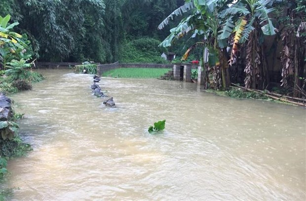 Heavy rains inundate over 900 houses in Cao Bang hinh anh 1