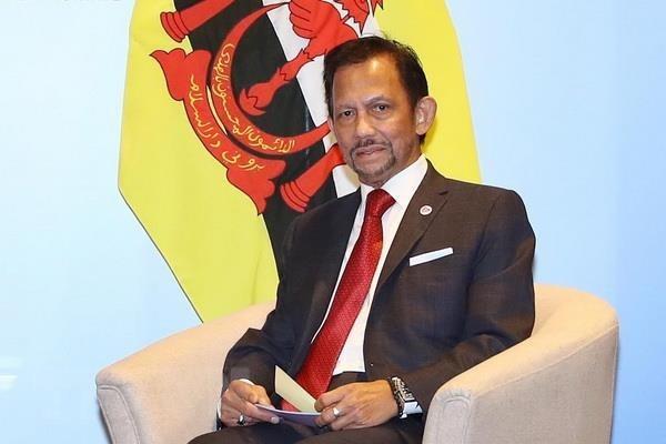 Brunei celebrates Sultan Haji Hassanal Bolkiah's 73rd birthday hinh anh 1