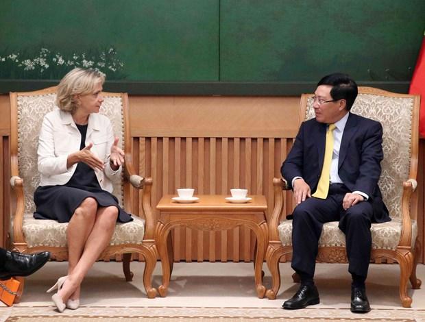 Deputy PM Pham Binh Minh receives leader of Ile-de-France region hinh anh 1