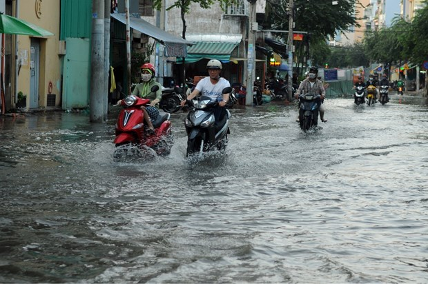 HCM City to have new climate change response plan hinh anh 1