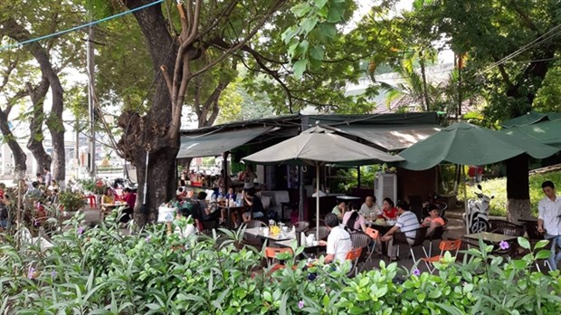 HCM City's residents lament lack of green space hinh anh 1