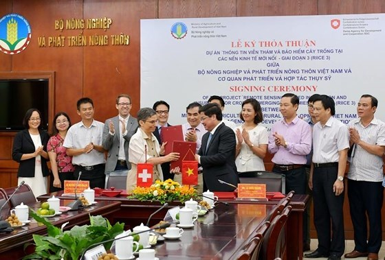 Switzerland helps Vietnam apply remote-sensing technology in rice production hinh anh 1