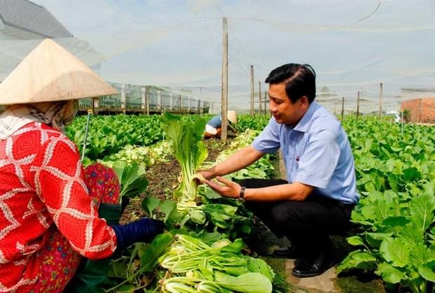 Long An develops advanced farming models hinh anh 1
