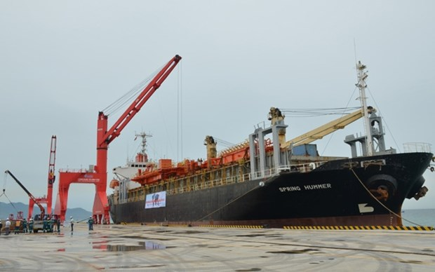 Vinh Tan int'l sea port welcomes first foreign vessel hinh anh 1