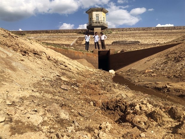 Binh Dinh experiences most serious drought in 15 years hinh anh 1