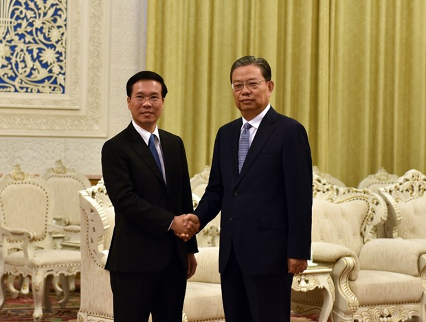Vietnamese, Chinese parties hold 15th theoretical workshop hinh anh 2