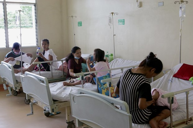 Philippines, Thailand work to tackle dengue fever outbreaks hinh anh 1