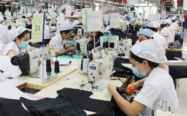 Vietnam spends 11.4 billion USD on garment material imports in H1 hinh anh 1