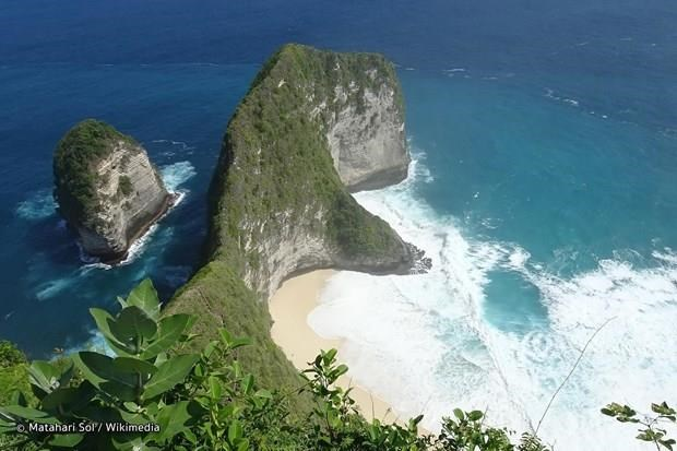 Body of Vietnamese tourist returned home from Bali hinh anh 1