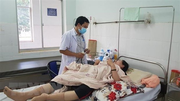 Hanoi's health sector prepares to tackle dengue fever hinh anh 1
