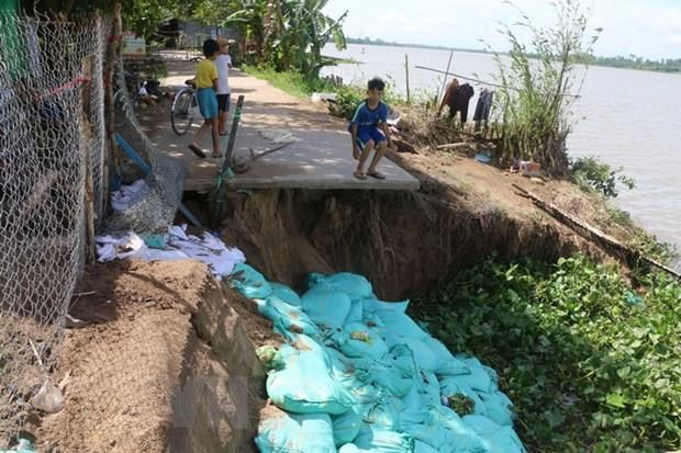 Dong Thap to spend big to upgrade erosion-resistant infrastructure hinh anh 1