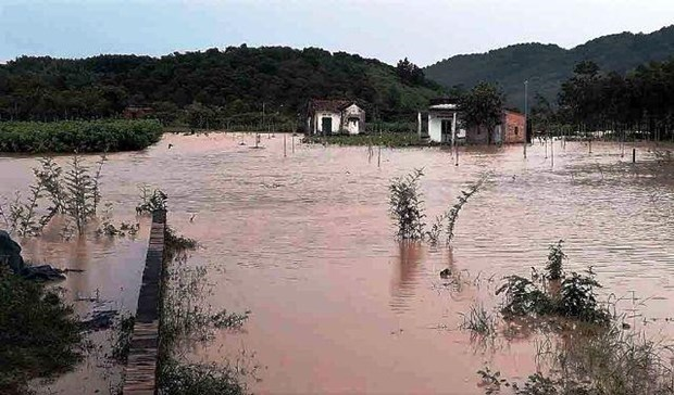 Heavy rains, floods wreak havoc in Yen Bai, Lam Dong hinh anh 1