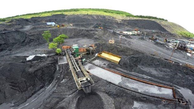 Vietnam's coal imports increases sharply by mid-July hinh anh 1