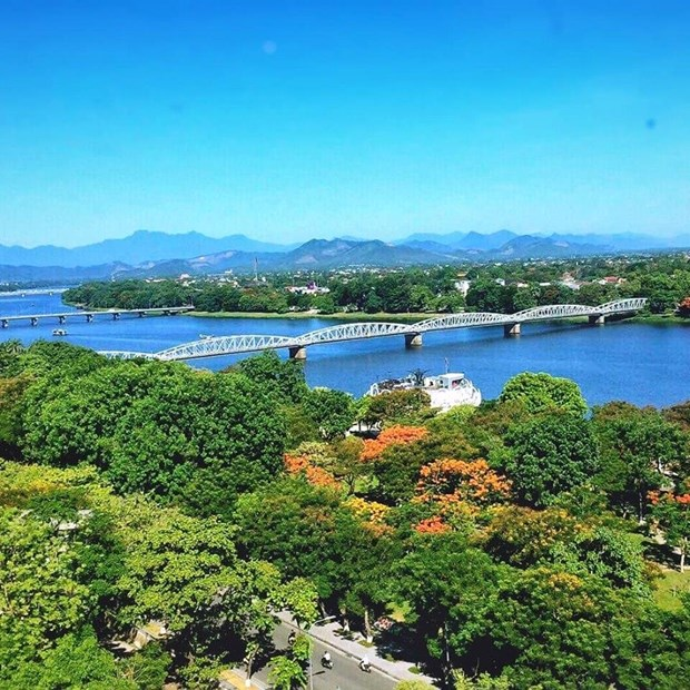 Thua Thien-Hue to have botanic garden on Huong River hinh anh 1