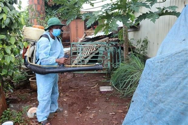 Hanoi records over 1,600 dengue fever cases hinh anh 1